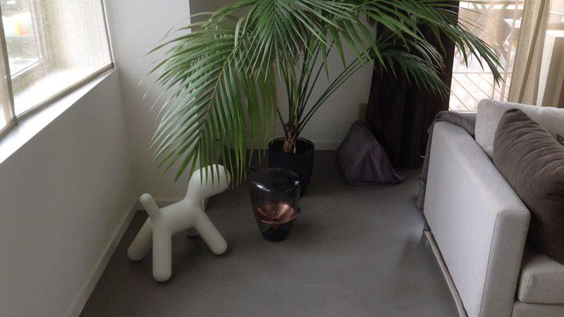 donkere gietvloer in woonkamer